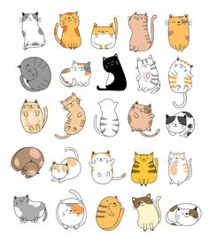 cat cartoon Premium Vector: Hand drawn baby cat collection - Landing page collections amp; free resources for designers Gato Doodle, Doodle Art, Doodles Bonitos, Cute Baby Cats, Art Mignon, Cute Doodles, Kawaii Doodles, Cute Stickers, Easy Drawings