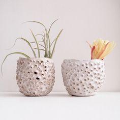 Orgánicos airplant escultórico titular + orificios, té de cerámica luz titular, florero de cerámica hecha a mano, vasos de cerámica blanco, florero de cerámica orgánico,