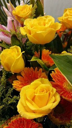 Beautiful Roses, Life Is Beautiful, Seed Packaging, Brighten Your Day, Yellow Roses, Love Flowers, Flower Power, Flower Arrangements, Seeds