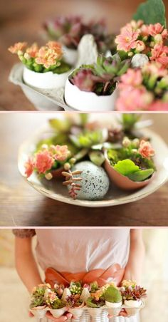 AWESOME egg/egg carton DIY project: Items needed: Dirt (we used potting soil), egg shells, moss, succulents, and flowers (optional).next Easter Ostern Party, Diy Ostern, Cactus E Suculentas, Deco Floral, Egg Shells, Succulents Garden, Succulent Planters, Succulent Arrangements, Easter Crafts