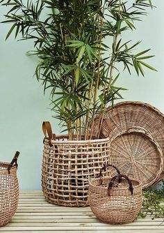 Best way to do it in the simplest way, is by getting new indoor furniture, such as rattan! We have 25 best rattan indoor planter ideas Dulux Green, Estilo Tropical, Deco Nature, Decoration Plante, Plant Basket, Bamboo Basket, Bamboo Planter, Rattan Basket, Deco Boheme