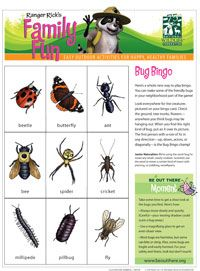 Printable activity sheets from National Wildlife Federation- bugs and beach Don't forget to check out ranger Rick magazines from library Insect Activities, Nature Activities, Science Activities, Kindergarten Activities, Preschool, Camping Theme Crafts, Outdoor Classroom, Magazines For Kids, Nature Study