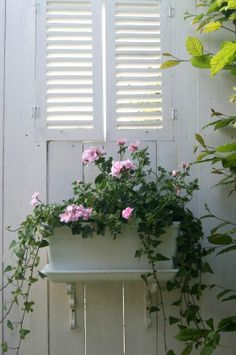 pretty windowbox...
