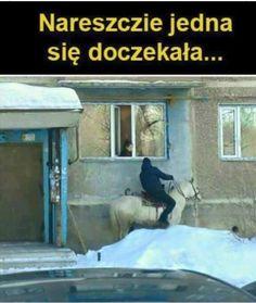 Best Memes, Funny Memes, Funny Lyrics, Polish Memes, Dark Sense Of Humor, Past Tens, Komodo Dragon, Smile Everyday, Good Mood