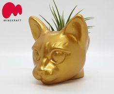 Cat planter cat head planter cat succulent pot planter air | Etsy Head Planters, Planter Pots, Head Statue, Succulent Gifts, Ceramics Ideas, Contemporary Sculpture, Plant Holders, Cat Gifts, Air Plants