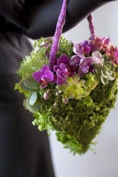 Phalenopsis e succulente