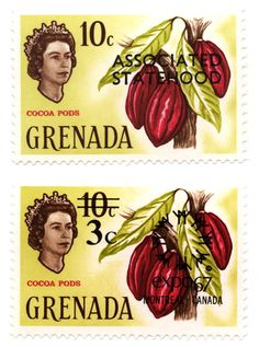 Grenadan postage stamps from the 1960s, depicting Queen Elizabeth II, seemingly gazing at some striking red cacao pods.—