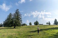 Barfusswanderweg Schweiz - Sentier Pieds Nus Rebeuvelier Barefoot, Pathways, Hiking, Ideas