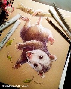 Possum commission by KelleeArt on DeviantArt