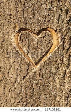 Find tree carving heart stock images in HD and millions of other royalty-free stock photos, illustrations and vectors in the Shutterstock collection. Heart Pictures, Heart Images, Heart Pics, Sign Image, Tree Carving, Interactive Art, Photo Heart, Tree Art, Photo Editing