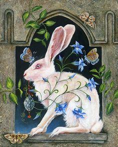 Rabbit Rabbit Jack of White