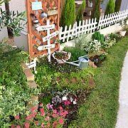 My Shelf,ナチュラル,庭,雑貨,ガーデニング,100均に関連する他の写真