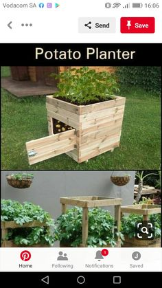 Best 20 Vegetable Garden Design Ideas for Green Living - New ideas Diy Gardening, Organic Gardening Tips, Raised Vegetable Gardens, Vegetable Garden Design, Veggie Gardens, Vegetable Gardening, Garden Boxes, Garden Planters, Garden Ideas