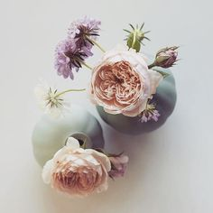 Flowers for your Friday... I love simple arrangements and bud bases are amazing as they just need a single stem #flowers #blooms #tclloves image @katherinedorrington