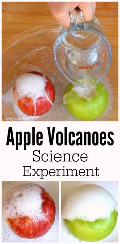 These apple volcanoes combine the classic baking soda and vinegar reaction to…