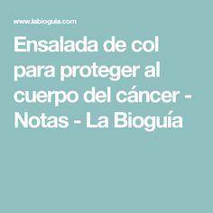Ensalada de col para proteger al cuerpo del cáncer - Notas - La Bioguía