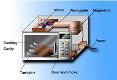 Microwave Ovens Are Dangerous! | All Conspiracy