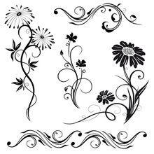 Blumen, Blüten, Pflanzen, Vektor Set