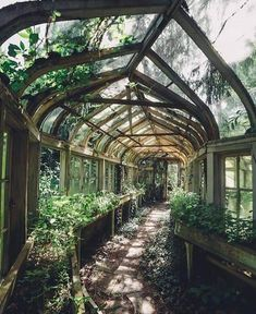 Overgrown Greenhouse If we could wave a wand, we'd want to restore these gorgeous abandoned houses right now. Slytherin Aesthetic, Exterior, Abandoned Places, Abandoned Houses, Abandoned Mansions, Abandoned Castles, Dream Garden, My Dream Home, Future House