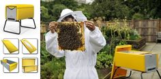 Love this urban beekeeper beehive from BEEHAUS