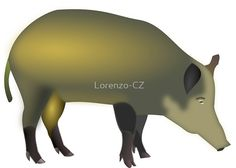 """Wild boar"" by Lorenzo-CZ Chiffon Shirt, Chiffon Tops, Wild Boar, Long Hoodie, Travel Bags, Laptop Sleeves, Art Boards, Classic T Shirts, Travel Tote"