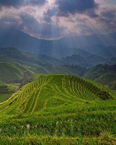 Hills of Nepal