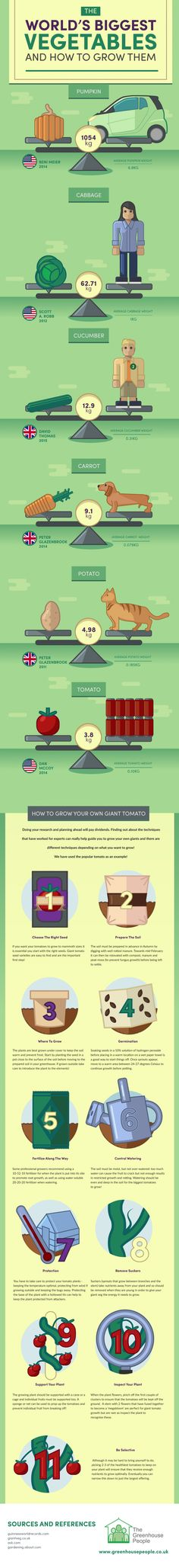 The world's biggest vegetables & how to grow them