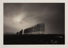 MICHAEL KENNA (* 1953) Winter Trees, Oxfordshire, England 1984Gelatin silver print, mounted on cardboard 16 x 23 cm (6.3 x 9.1 in)