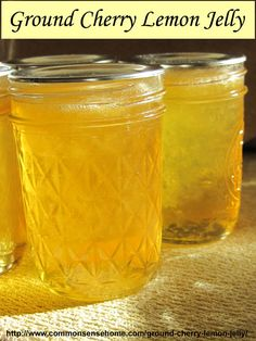 Ground cherry lemon jelly is made with ground cherries (husk tomatoes) and lemon juice for a jelly that tastes like a lemon drop. Great on toast with butter.