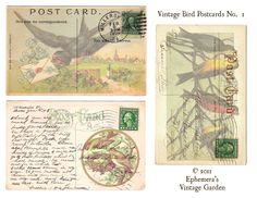 Ephemera's Vintage Garden: Free Printable: Vintage Bird Postcards