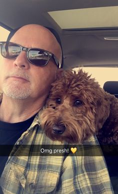Checking out the autumn leaves - drive with Dad. Golden Doodle Dog, Golden Doodles, Mini Goldendoodle, Labradoodle, I Love Dogs, Puppy Love, Doodle Bear, Red Poodles, Dog Mixes