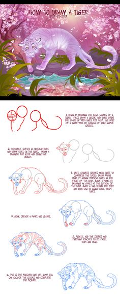 How+to+draw+a+sakura+tiger+step-by-step+by+Static-ghost.deviantart.com+on+@deviantART