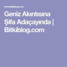 Geniz Akıntısına Şifa Adaçayında | Bitkiblog.com