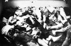 Kielce, Poland, Bodies at the site of a pogrom in 1946. Even after the war, Poland continued to murder Jews returning from concentration camps looking for family. The photographs are from a police investigation.