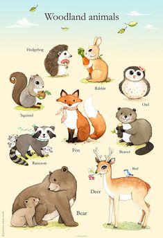 Imprimer Woodland animaux, Woodland pépinière Art, forêt art de l'affiche, aquarelles animaux, Woodland, sticker Woodland, animaux de la forêt