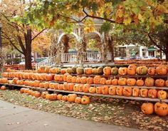 50 New England Travel Ideas for the Thrifty Traveler. http://visitingnewengland.com/blog-cheap-travel/?p=3190 pic: Keene Pumpkin Festival, Keene NH