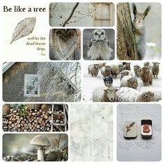 Be like a tree and let the dead leaves drop. #moodboard #mosaic #collage #inspirationboard #byJeetje♡