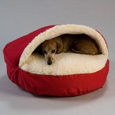 The Snoozer Cozy Cave nesting dog bed is one of a kind dog bed that is designed to give your pet a cozy place to stay warm. Often referred to as a Nesting dog bed, it is perfect for pets who enjoy sta