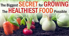 One of the easiest ways to improve soil health and help carbon sequestration in the soil is to use wood chips as ground cover. http://articles.mercola.com/sites/articles/archive/2014/08/24/soil-health-carbon-sequestration.aspx