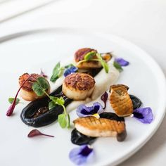 Seared scallops with squid ink and roasted mushrooms