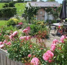 Cottage garden, pretty little courtyard and a pastoral setting