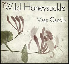 Wild Honeysuckle Candle - Vase Candle Refill - Scented, Soy, Paraffin Wax Blend, Paper Core, Self-trimming Wick Candle for Refillable Vase, 50 Hour Burn Time, Free Shipping - Venue and reception decor (*Amazon Partner-Link)