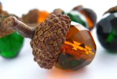 Autumn Finds by Tammy  and daughter on Etsy