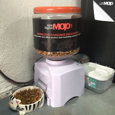 Automatic feeding systems: Boss is the name of our cat! Here at MOJO, we make sure he gets well feed all the time thanks to our automatic cat feeding system for food and water. #ADMOJO #automatic #systems #keepcalmandfeedyourcat