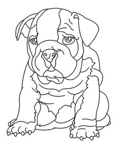 Bulldog Colouring Pages : bulldog, colouring, pages, Bulldog, Coloring, Pages, Ideas, Pages,, Bulldog,, Pictures