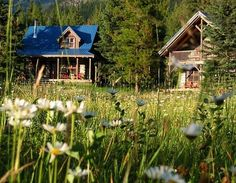 Lose yourself in ancient wilderness in one of BC's eco-lodges that are fully committed to conserving energy, the environment, and the cultural Lodges, British Columbia, Conservation, Wilderness, Environment, Cabin, Culture, House Styles, Home Decor