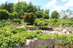 Everything You Need to Know About the Botanical Gardens at Asheville | The Esmeralda Inn & Restaurant | Chimney Rock, NC