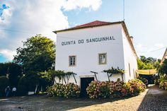 portugal-wedding-photographer-071