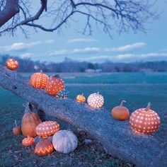 Add twinkle to your fall nights with these magical pumpkin lanterns. Instead of carving traditional faces, drill tiny holes into each pumpkin. Use strings of tiny white lights to illuminate the pumpkins, creating star-studded globes sure to delight any ghost or goblin.