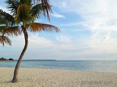 Key Biscayne Beach | Flickr - Photo Sharing!